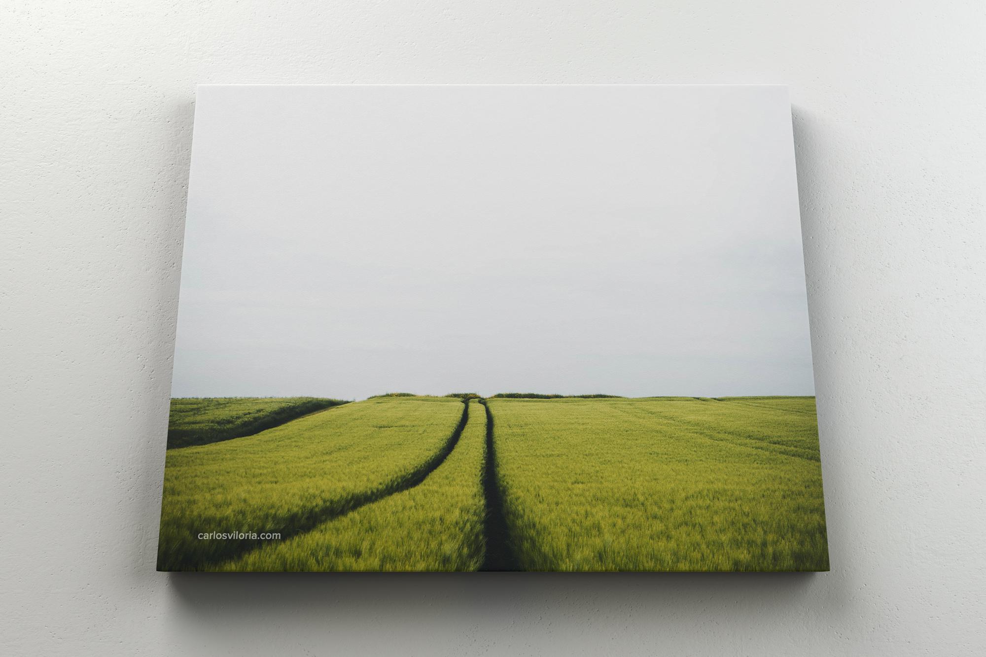 Landscape Canvas Ratio 5x4 Mockup